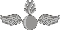 Векторный клипарт: U.S. Navy rating insignia, Aviation Ordnanceman (AO)