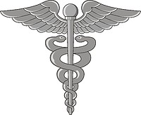Векторный клипарт: U.S. Navy rating insignia, Hospital Corpsman (HM)