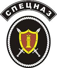 ФСИН РФ, нарукавный знак отделов специального назначения