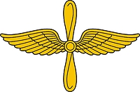 Russian Air Force Aviation, insignia