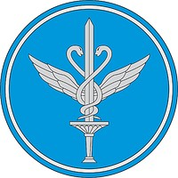 Russian Central Military Aviation Hospital, sleeve insignia