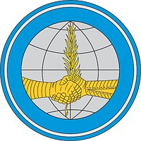 Russian Ministry of Defense, sleeve insignia of the department of foreign affairs