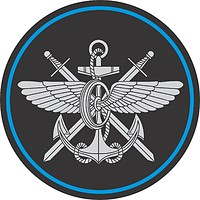 Russian Military Communication Service, sleeve insignia