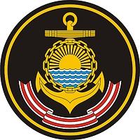 Тихоокеанский флот россии нарукавный