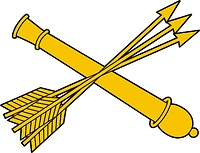 Russian Troop Air Defense, insignia