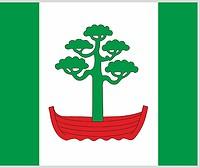Dūkštas (Lithuania), flag