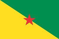 Französisch-Guayana, Department-Flagge (2010)