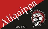Aliquippa (Pennsylvania), flag