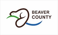 Beaver (County in Alberta), Flagge