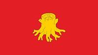 Nova Ruda (Poland), flag