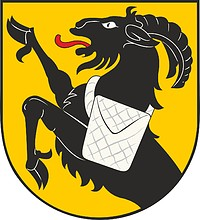 Kiikoinen (Finland), coat of arms