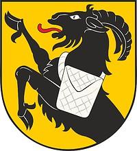 Kiikoinen (Finnland), Wappen