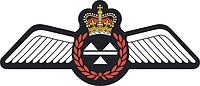 Royal Canadian Air Force (RCAF) Loadmaster, badge