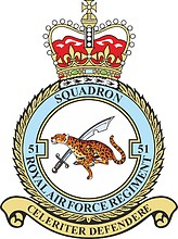 British No. 51 Squadron RAF Regiment, badge