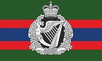 British Army Royal Irish Regiment, flag