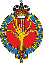 British Army Welsh Guards, badge