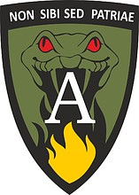 Grand Duke Algirdas Mechanized Infantry Battalion 1st Company, emblem