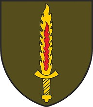 Lithuanian Special Operations Force, emblem