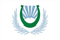 Nalchik (Kabard-Balkaria), flag
