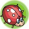 Vector clipart: ladybird