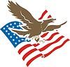 Amerikanisches Adler