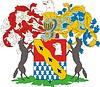 Stroganow Barone, Familienwappen (T.1, S.34 OG)