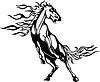 Pferd Flamme