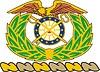 Helmzier von U.S. Quartermaster Corps