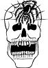 Vampir Schädel und Spinne