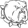 Bulldogge mit Halsband