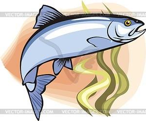 Fisch - Vektor-Design