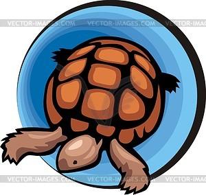 Черепаха - рисунок в векторе