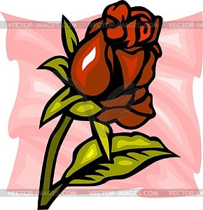 Rote Rose - farbige Vektorgrafik