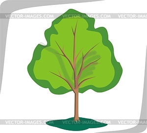 Tree - vector image
