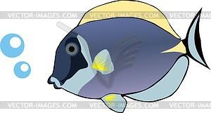 Aquarienfische - Stock Vektor-Bild