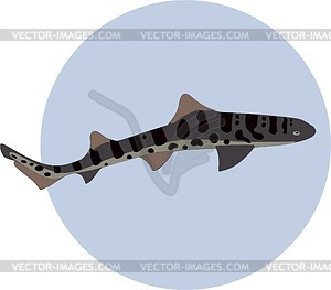 Fish - vector image