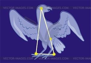 Sternbild Phoenix - Vektorgrafik