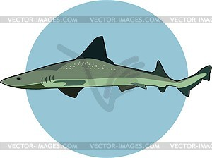 Shark - vector clip art