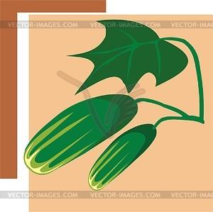 Gurke - Vektorgrafik-Design