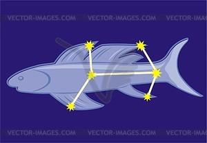Sternbild Fliegender Fisch - Vektorgrafik