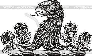 Adler - Clipart
