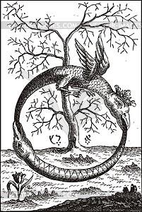 Ouroboros mit Schlangen von Abraham Eleazar - Vektorgrafik