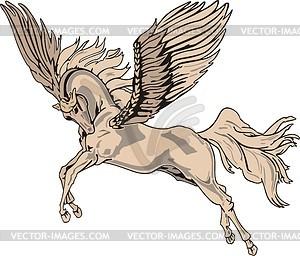 Pegasus - vektorisiertes Clipart