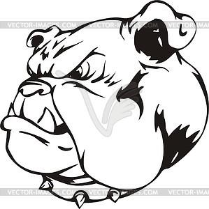 Kopf der Bulldogge - Vektorgrafik