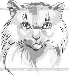 Katze - Clipart-Bild