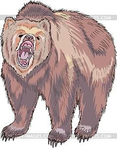 Бурый медведь - векторное изображение EPS