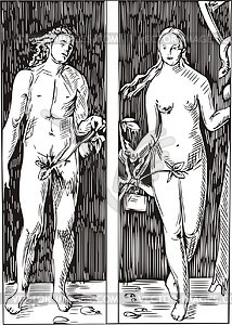 Adam and Eva; von Dürer - Vektorgrafik