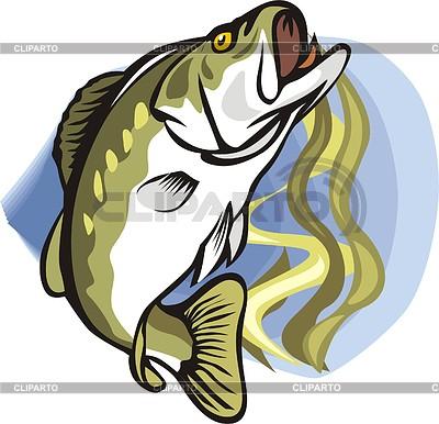 Fish | Klipart wektorowy |ID 2004350