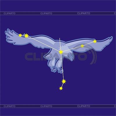 Constellation Aquila | Klipart wektorowy |ID 2011711