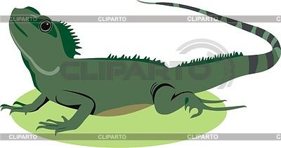 Lizard | Klipart wektorowy |ID 2004902